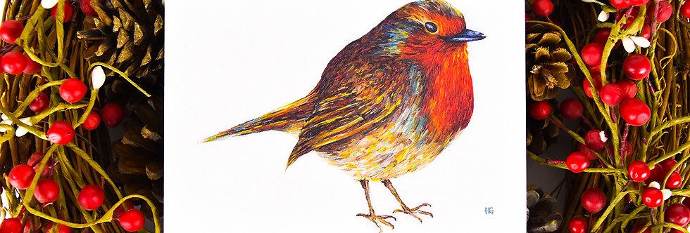 Rambunctious Robin Christmas Card