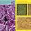 Thumbnail: Cahier de jeux land art pour adultes