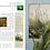 Thumbnail: Quand la nature inspire les peintres