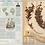 Thumbnail: L'herbier des explorateurs