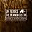 Thumbnail: Un temps de mammouth, portrait d'un géant disparu