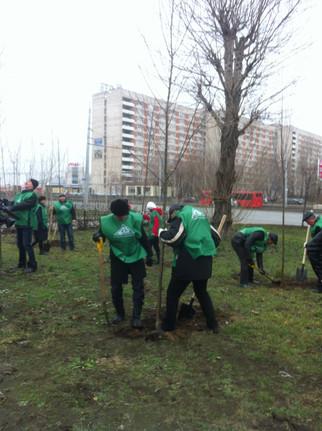 Участие в программе «Зеленый рекорд 2012