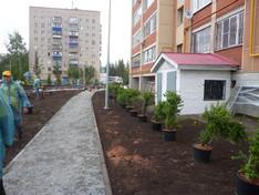 """Озеленение парка """"Шамсинур"""""""