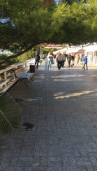 Ландшафтный форум Зеленая стрела в г. Со