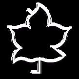 Logo_Transparente_SOMBRA.png