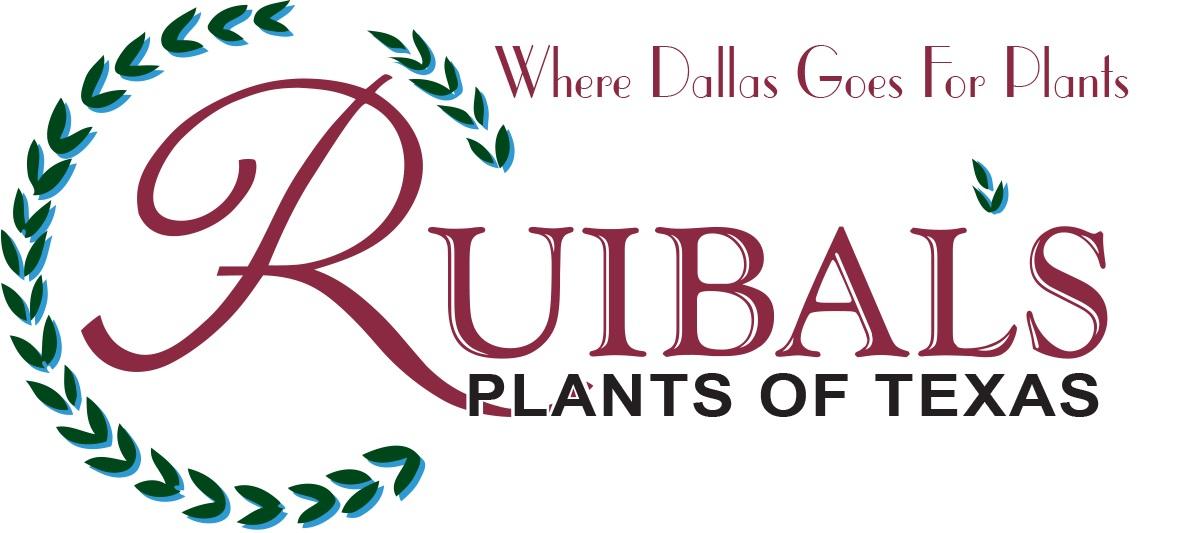 Ruibals_Logo
