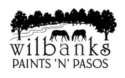 DCHS logo Wilbanks Paints and Pasos
