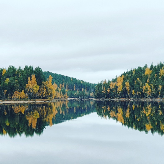 Views in autumn.