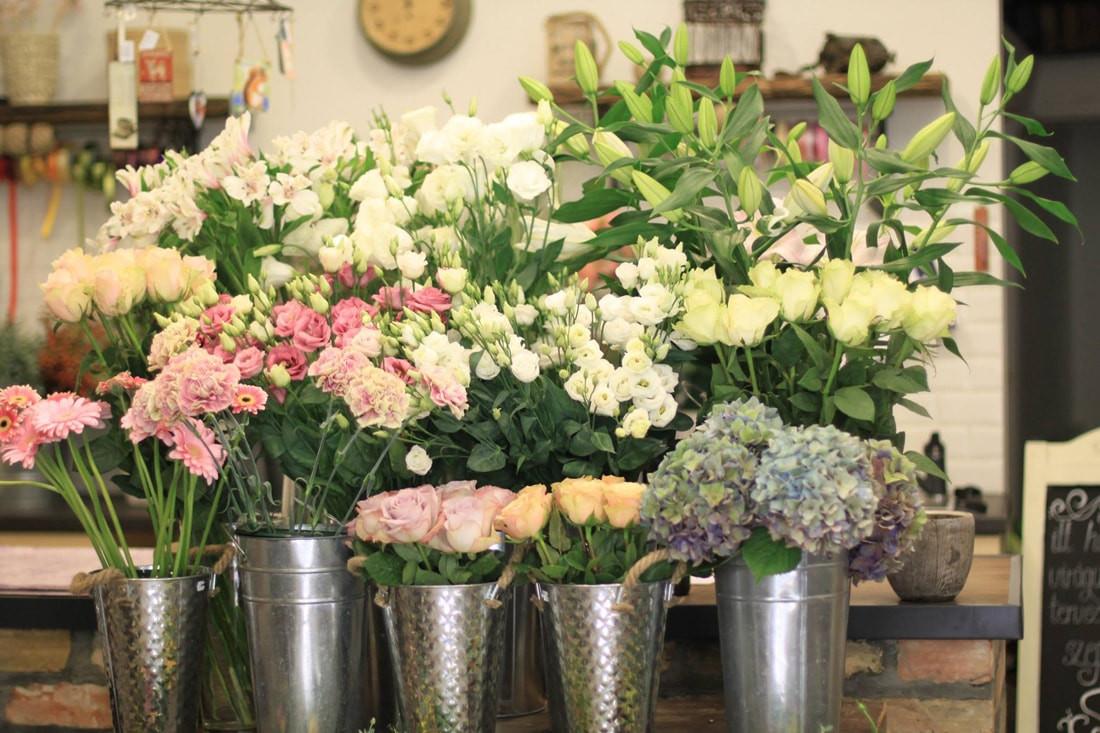 Anemone-Fleur-3298465931-min.jpg