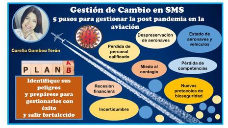 Pandemia y Paralización de Operaciones Aéreas, dos situaciones que atañen a la Seguridad Operacional