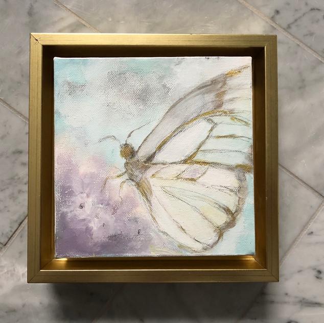 Butterfly Still Life.jpg
