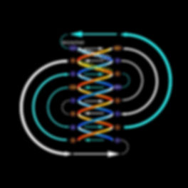 FIBreducedNumerology1_invert.jpg