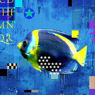 DUBOULAYI FISH.jpg