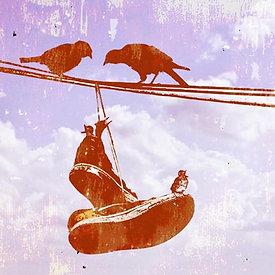 SHOO BIRDS