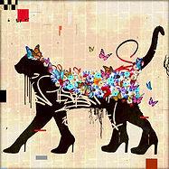 CAT WALK.jpg