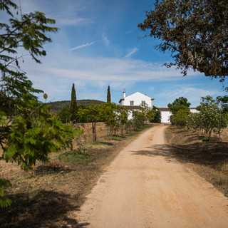 Path to Herdade dos Alfanges
