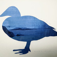 Eel, paper cut and watercolor, 30x40cm, 2019