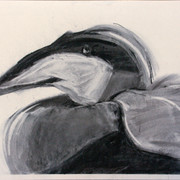 Kaave1, charcoal, 50x62cm, 2012