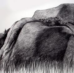 Takapihalta, hiili, 140x90cm, 2010