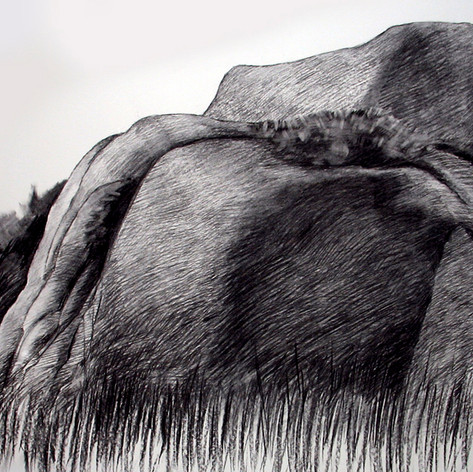 From the backyard, charcoal, 140x90cm, 2010