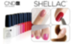 the-one-hair-colour-specialists-shellac-