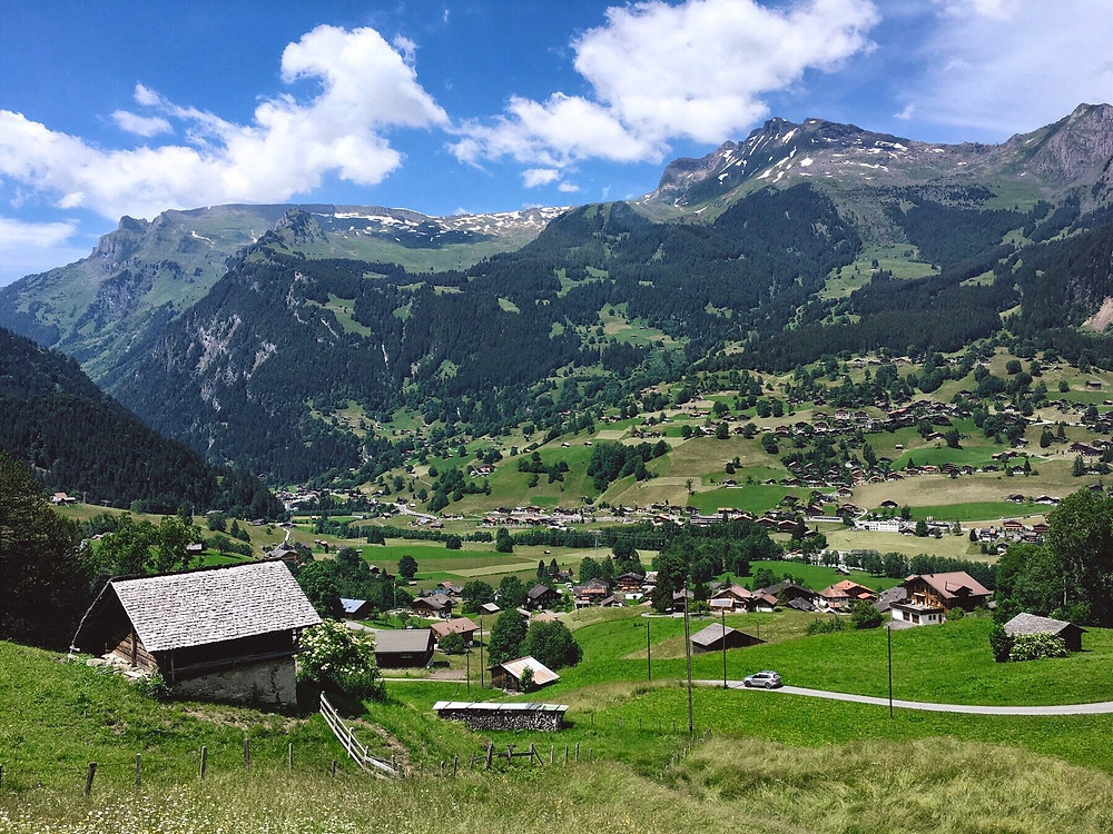 The view from the train, travelling from Kleine Scheidegg to Grindelwald