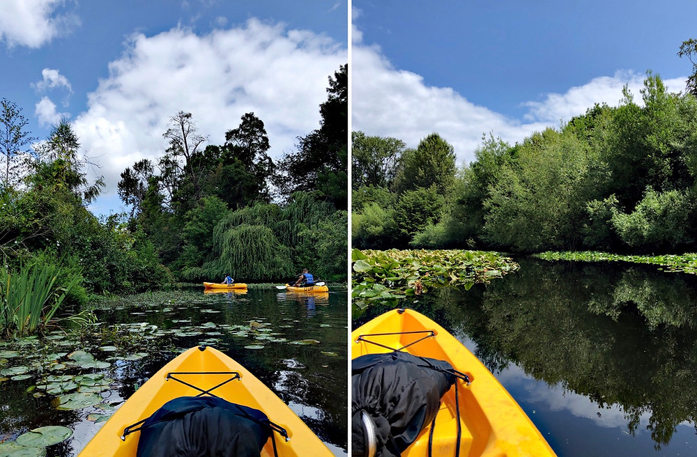 Kayaking at the University of Washington Arboretum