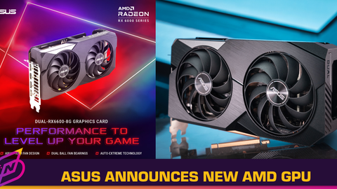 Asus Announces the Dual Radeon RX 6600 Graphics Card