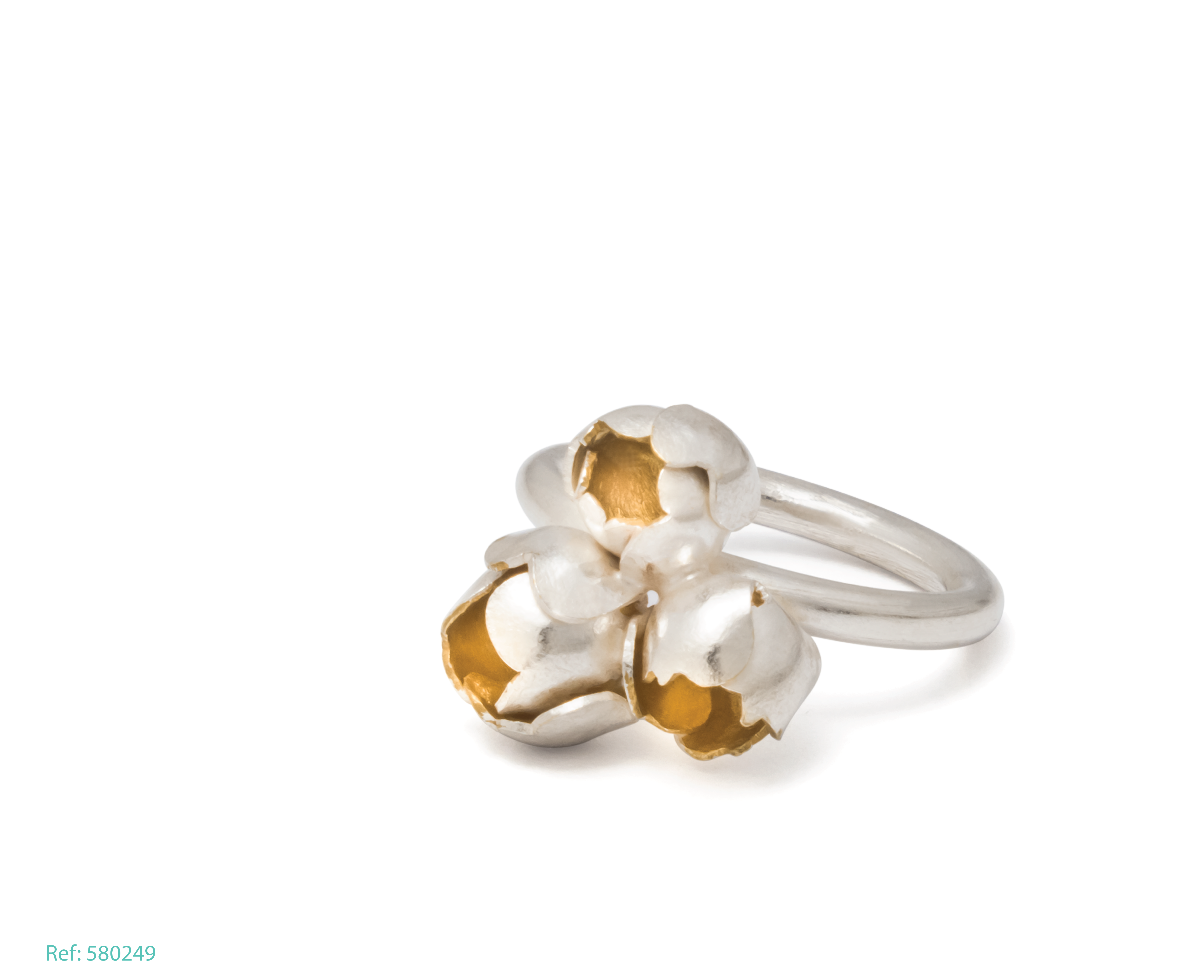 Anillo barnacle Ref 580249