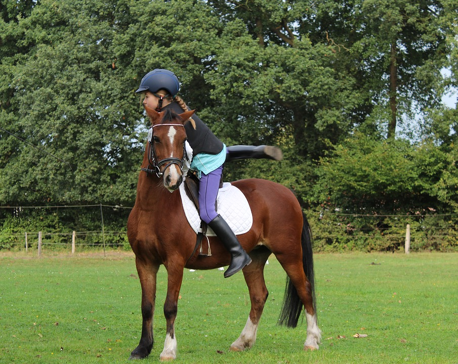 horsewoman-1781972_960_720