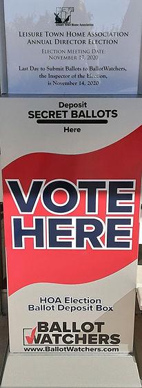 Voters Box 10.19.20.jpg