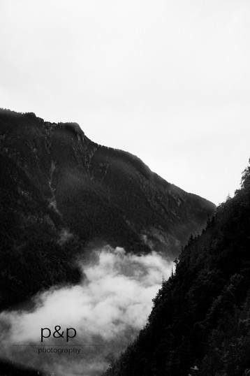 der Nebelmorgen I
