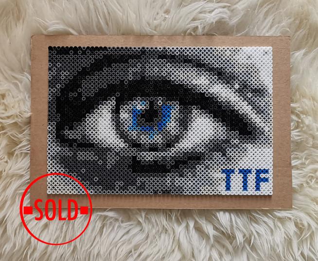 TTF - makro eye