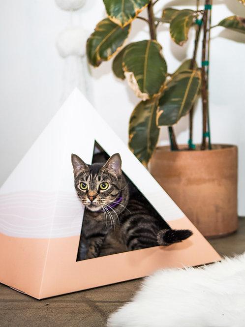 Cat sitting in Wavey Cardboard Cat Box next to plant