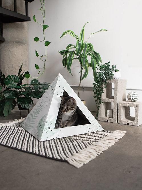 Cat sitting in Oasis Cardboard Cat Box