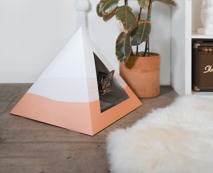 kitty kardboard - scatter - lifestyle ph