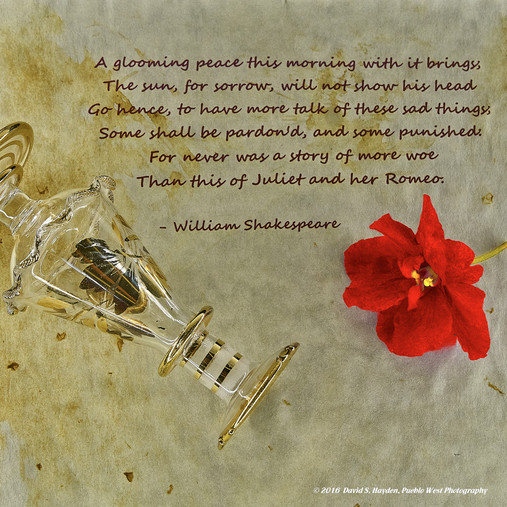 Shakespeare Proof of concept_2016-08-05.
