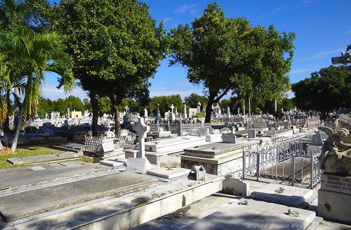 Colon Cemetery, Havana 8