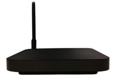 ONT 4 Ports Gbit, 1 Tel, Wifi 802.11b/g/n