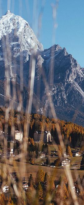 vertical_banner_veneto.jpg