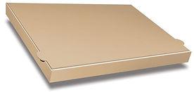 pb3505_half_metre_plain_brown_box.jpg