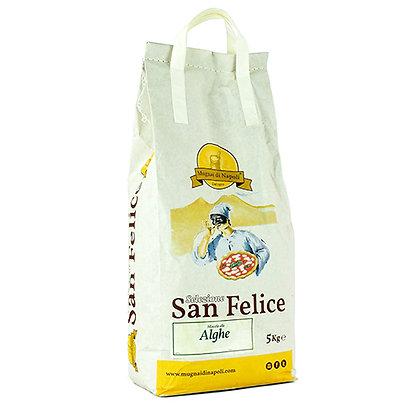 MUGNAI DI NAPOLI - Algae Speciality Flour - 5kg