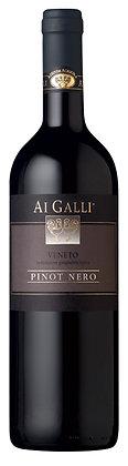 AI GALLI - Pinot Nero Veneto IGT
