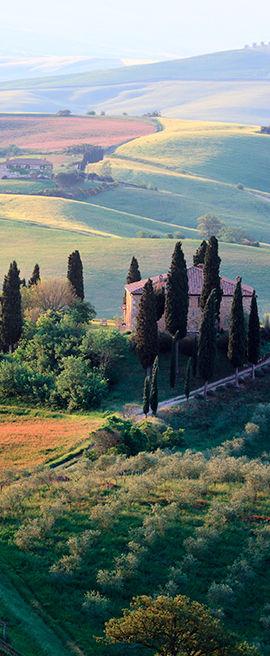 vertical_banner_toscana.jpg