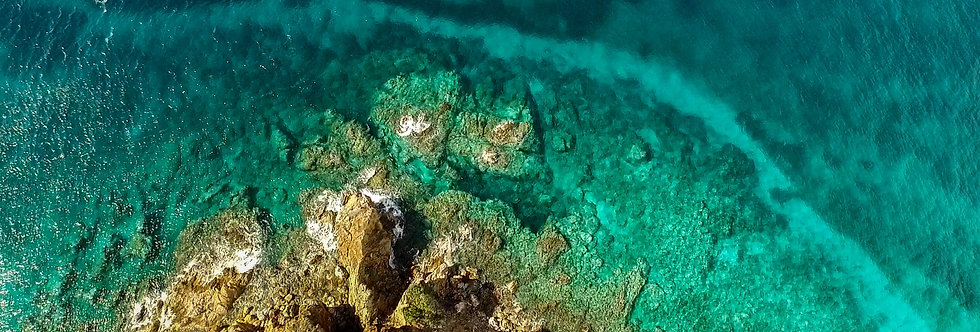 """TURQUOISE REEF"""