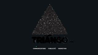 TRIANGO : LOGO et WEB
