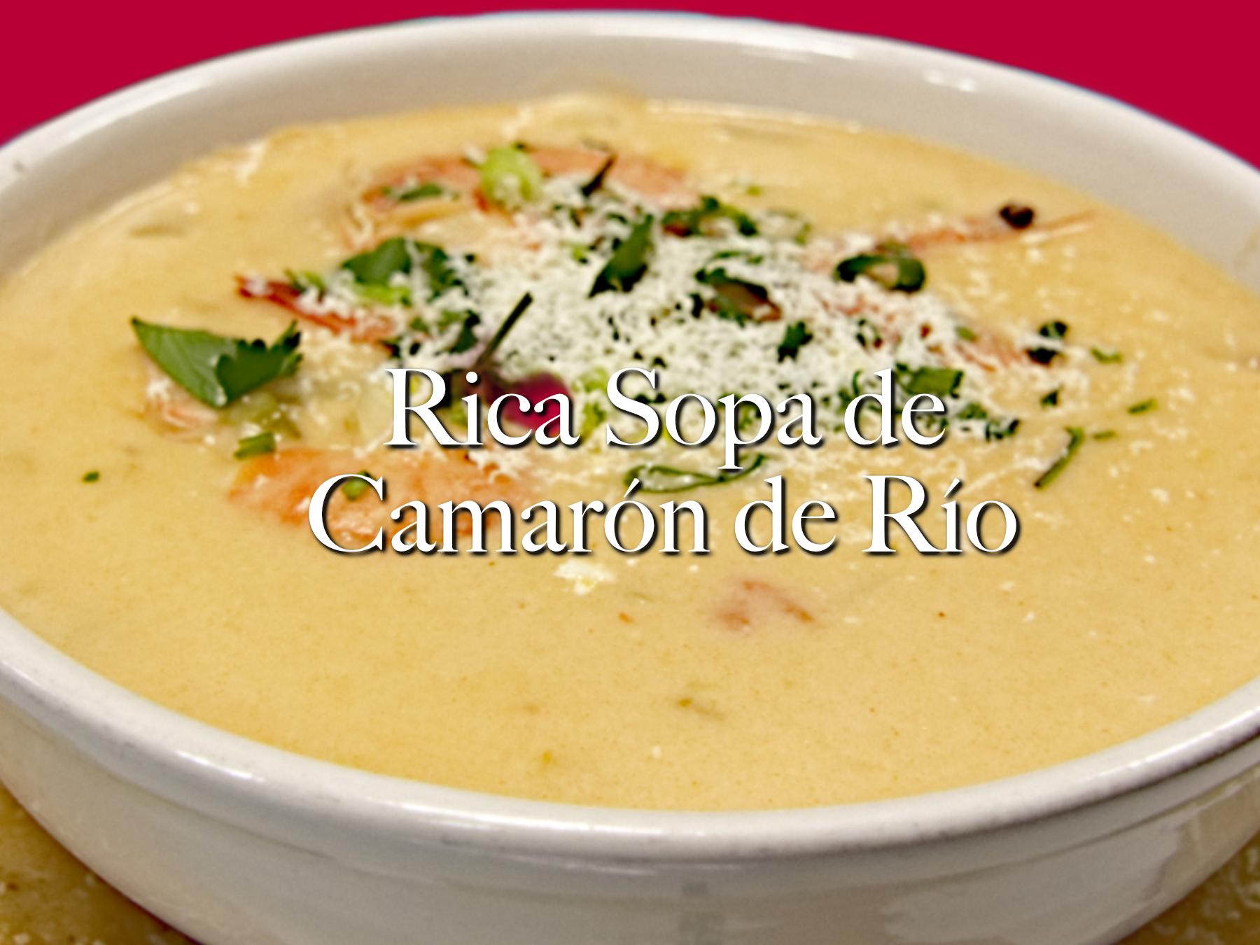Foto web sopa