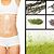 Cellulite body treatement