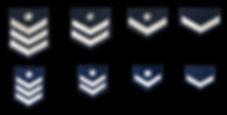 階級章.jpg