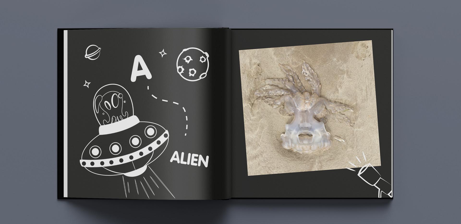 jellyfish a.jpg